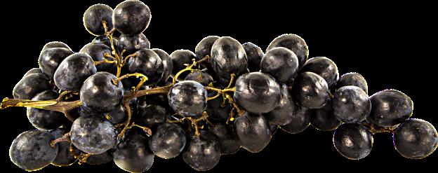 fruit-1218185_1920