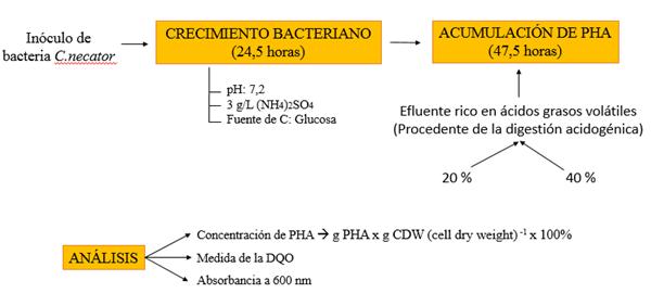 Producción de PHAs